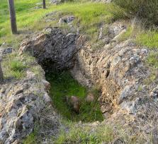 Antiguo cementerio judío de Plasencia