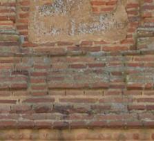 Serpientes en la Iglesia de San Blas de Risco
