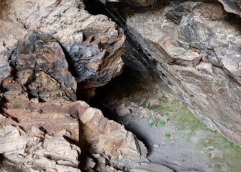 El dragón de la Cueva Chiquita o Cueva de Álvarez